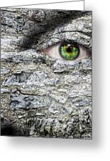 Stone Face Greeting Card by Semmick Photo