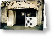 Stone Pony Greeting Card by Colleen Kammerer