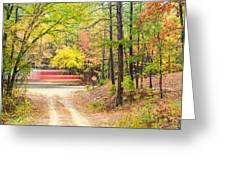 Stop - Beaver's Bend State Park - Highway 259 Broken Bow Oklahoma Greeting Card by Silvio Ligutti