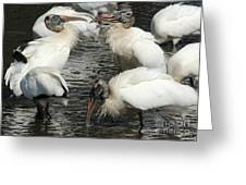 Stork Flock Greeting Card by Theresa Willingham