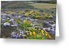 Storm over Wildflowers Greeting Card by Mike  Dawson
