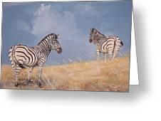 Stormy Zebra Greeting Card by Robert Teeling