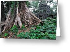 Strangler Fig Tree Roots On The Ancient Preah Khan Temple Greeting Card by Sami Sarkis