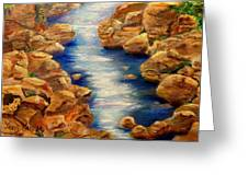 Stream In Colorado Mountains Close To Ouray Greeting Card by Janis  Tafoya