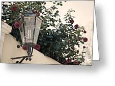 Streetlight Surrounded By Roses Greeting Card by Aiolos Greek Collections