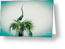 Stretching Heron Greeting Card by Bob and Nancy Kendrick