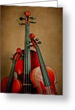 Stringed Trio Greeting Card by David and Carol Kelly