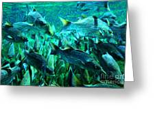 Striped Bass - Painterly V1 Greeting Card by Wingsdomain Art and Photography