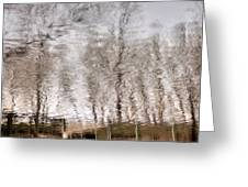 Subdued Reflection Greeting Card by Steven Milner