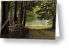 Sugarbush Road Greeting Card by Michael Swanson