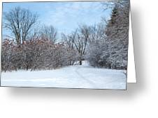 Sumacs Alongside The Path. Greeting Card by Rob Huntley