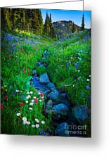 Summer Creek Greeting Card by Inge Johnsson