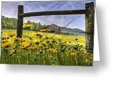Summer Fields Greeting Card by Debra and Dave Vanderlaan