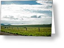 Summer In The Country Greeting Card by Swift Family