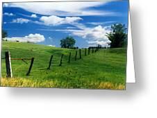 Summer Landscape Greeting Card by Steve Karol