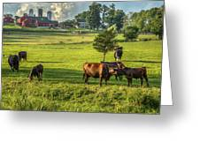 Summer On The Farm Greeting Card by Bill  Wakeley
