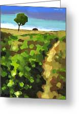 Summer Path Greeting Card by Douglas Simonson
