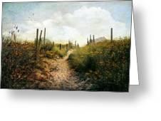 Summer Pathway Greeting Card by John Rivera