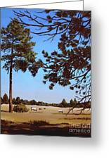 Summer Serenity Greeting Card by Suzanne Schaefer
