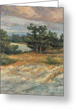 Summer Shadows - Provincetown Greeting Card by Gregory Arnett