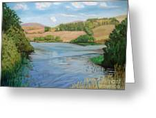 Summer Solitude Greeting Card by Yvonne Johnstone