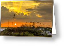 Summer Sun Greeting Card by Marvin Spates