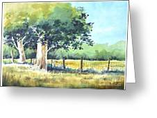 Summer Trees Greeting Card by Rick Mock