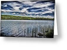Summer Waters Greeting Card by Todd and candice Dailey