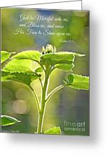 Sun Drenched Sunflower With Bible Verse Greeting Card by Debbie Portwood