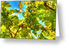 Sun Kissed Green Grapes Greeting Card by Eti Reid