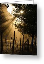 Sun Rays Through Dust Grafton Ghost Town Rockville Utah Greeting Card by Robert Ford