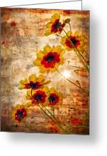 Sun Seekers Greeting Card by Debra and Dave Vanderlaan