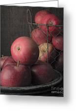 Sun Warmed Apples Still Life Standard Sizes Greeting Card by Edward Fielding