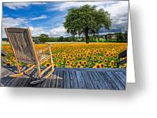 Sunflower Farm Greeting Card by Debra and Dave Vanderlaan
