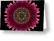 Sunflower Moulin Rouge I Flower Mandala Greeting Card by David J Bookbinder