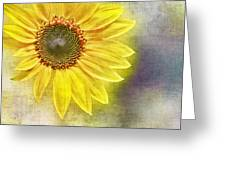 Sunflower Greeting Card by Penny Pesaturo