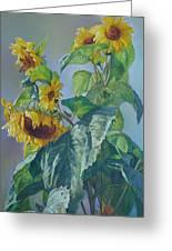 Sunflowers After The Rain Greeting Card by Svitozar Nenyuk