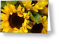 Sunflowers Greeting Card by Amy Vangsgard