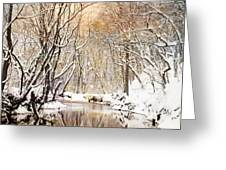 Sunkissed Winter Creek Greeting Card by Jai Johnson