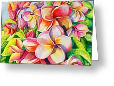 Sunlit Plumeria Greeting Card by Janis Grau