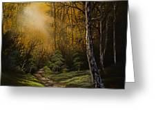 Sunlit Trail Greeting Card by C Steele