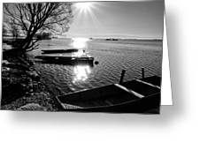 Sunny day Greeting Card by Davorin Mance