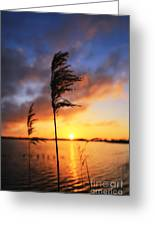 Sunrise @ The Lake Greeting Card by LHJB Photography