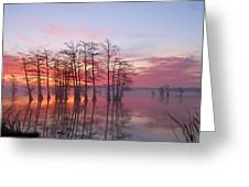 Sunrise At Reelfoot Lake Greeting Card by J Larry Walker