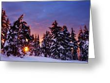 Sunrise Dreams Greeting Card by Darren  White