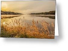 sunrise in a Cold landscape Greeting Card by Rose-Maries Pictures