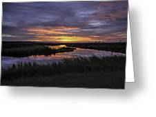 Sunrise On Lake Shelby Greeting Card by Michael Thomas