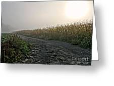 Sunrise Over Country Road Greeting Card by Olivier Le Queinec