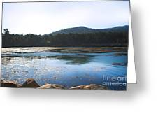 Sunrise Over Whaler's Cove at Point Lobos California Greeting Card by Artist and Photographer Laura Wrede