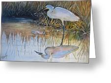 Sunset And Snowy Egret Greeting Card by Patricia Pushaw